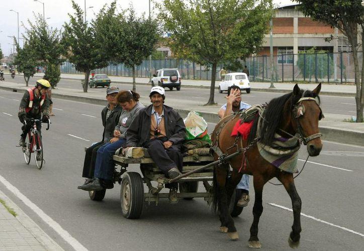 Las autoridades sancionarán a las 'zorras' que sigan circulando por la capital de Colombia. (EFE)