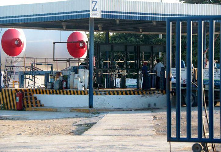 El 20% de las empresas registradas en Cozumel fueron clasificadas por Protección Civil como 'de alto riesgo'. (Gustavo Villegas/SIPSE)