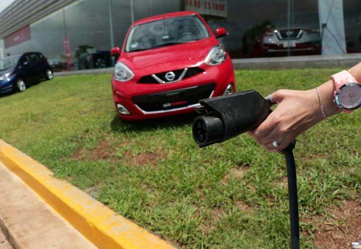 Reportan que de enero a julio se vendieron 50 vehículos híbridos en Yucatán. (Milenio Novedades)