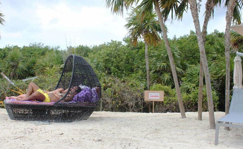 La Profepa confirmó que aplicó una multa al hotel Paradisus por devastar vegetación protegida. (Daniel Pacheco/SIPSE)