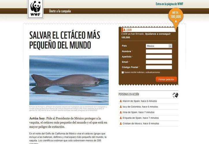 Convocan a firmar la petición de conservación al gobierno mexicano. (http://action.panda.org)