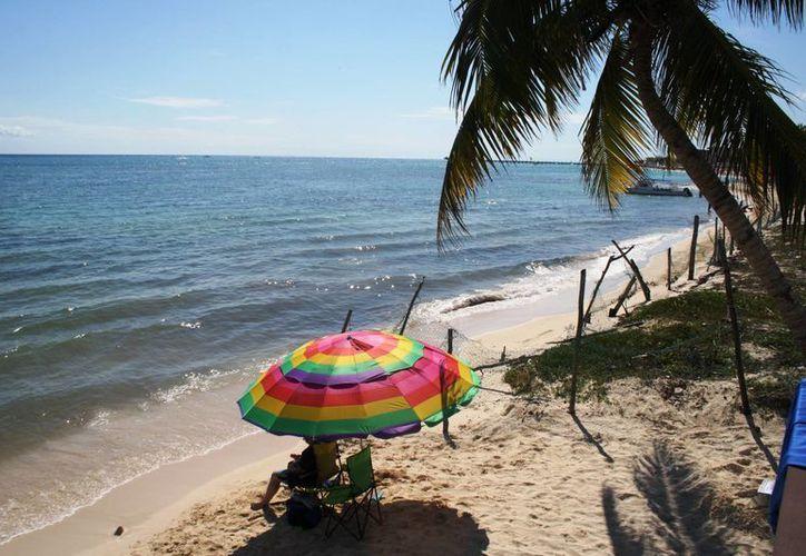El mal olor y el color café del mar se debe a la descomposición de sargazo afirma el Ayuntamiento. (Octavio Martínez/SIPSE)