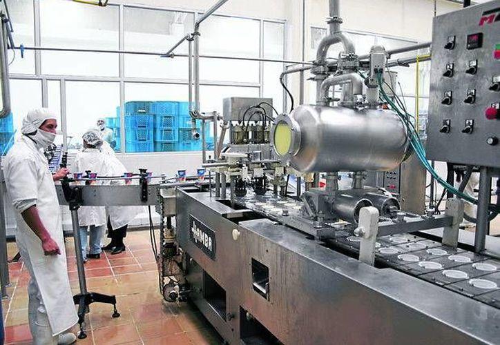 Umán tiene la ventaja de ubicarse en una zona estratégica para la industria. En la imagen un trabajador en una de las empresas ubicadas en el lugar. (Milenio Novedades)