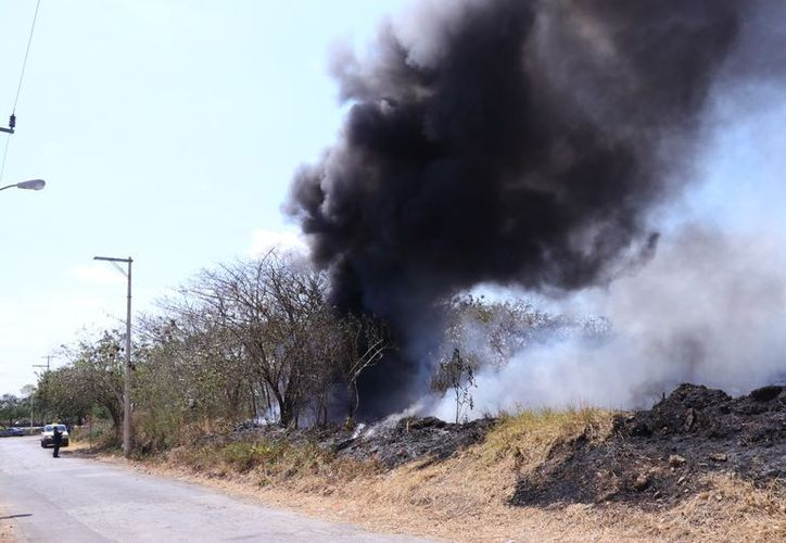 En la zona del ex basurero municipal aún se observan humaredas en el sitio que despiden un olor desagradable. (Jorge Acosta/ SIPSE)