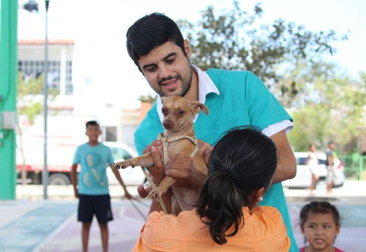 ¡Lleva a tus mascotas a vacunar en los 24 puntos que se establecieron en la ciudad! (Redacción/SIPSE)