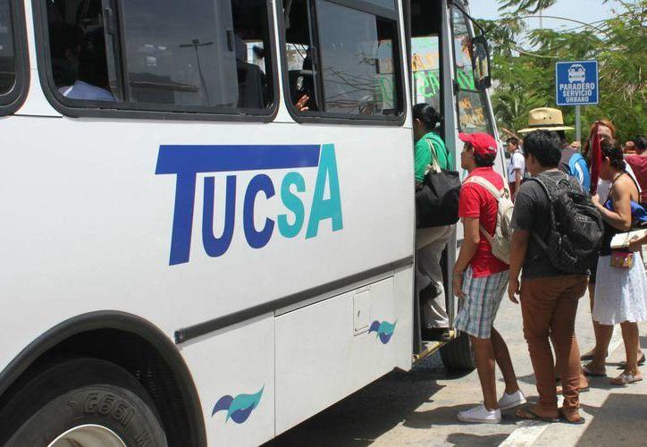 Los dos vehículos darán servicio en la zona de universidades en las inmediaciones del fraccionamiento La Guadalupana.  (Igor Cabrera/SIPSE)