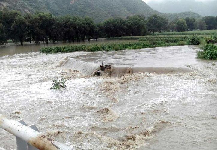 Las autoridades municipales confirmaron que las poblaciones son afectadas por el Río Venados y la Zona 2 de Riego, así como el Río Santiago. (Excelsior)