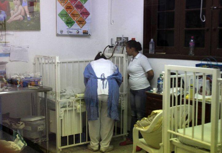 La lactancia materna es el principal alimento que los recién nacidos deben de tomar durante los primeros seis meses, para ayudarlos a obtener una mejor calidad de nutrición. (Harold Alcocer/SIPSE)
