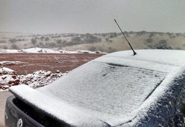 Esta semana, Sonora registrará temperaturas muy bajas por dos fenómenos: el frente frío 35 y la novena tormenta invernal. (Notimex)