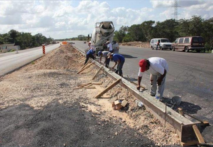 Como parte de la modernización de  la carretera Sierra Papacal- Chuburná Puerto, se considera construir 'pasos seguros' para la fauna, así como señalamientos en estos puntos para prevenir a los conductores. (Foto de contexto de SIPSE)
