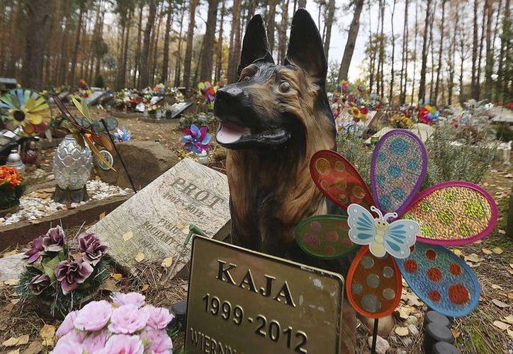 Imagen del 30 de octubre de 2016 de una tumba de un perro en el cementerio de animales en Nowy Konik, cerca de Varsovia, Polonia. (AP/Czarek Sokolowski)