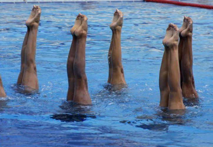 La selección de nado sincronizado, realiza sus entrenamientos en la alberca olímpica del colegio Boston. (Francisco Gálvez/SIPSE)