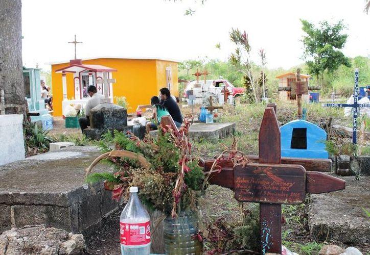 Uno de los terrenos, de cinco hectáreas, sería utilizado para la instalación de un panteón municipal. (Edgardo Rodríguez/SIPSE)