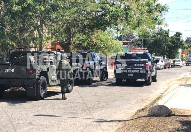Hasta el predio se presentaron elementos del Ejército, así como de la Policía Federal, la Policía Estatal de Investigación. (Novedades Yucatán)