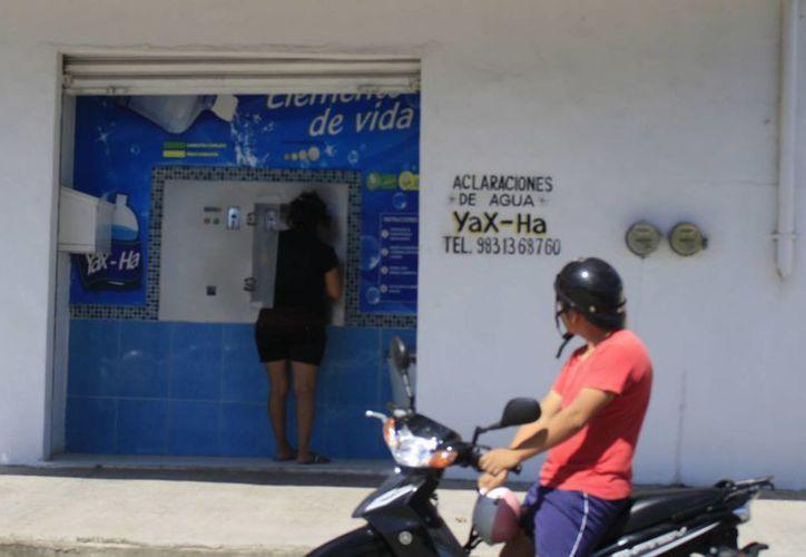 El año pasado, entre Othón P. Blanco y Bacalar, fueron suspendidas 15 purificadoras. (Harold Alcocer/SIPSE)