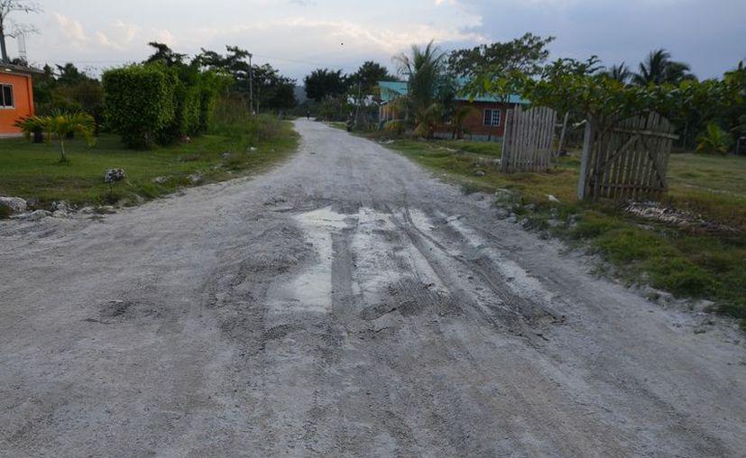 Pretenden la construcción de un camino de acceso desde X-Noh Cruz hasta el Punto Put. (Ángel Castilla/SIPSE)