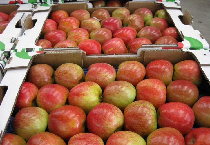 Tres empresas importadoras de manzanas de Estados Unidos no fueron sujetas a la cuota adicional impuesta por la Secretaría de Economía. (miledchihuahua.com.mx)