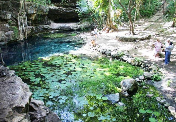 En Yucatán los principales depósitos de agua dulce son los cenotes. (SIPSE)