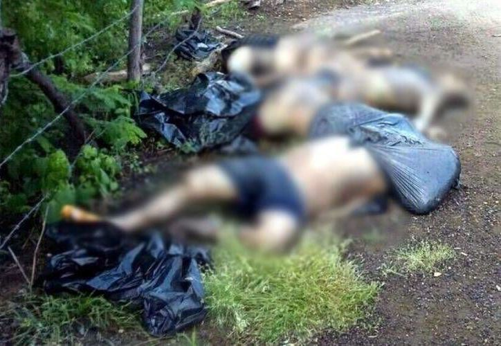 Afirman que los cuatro catequistas muertos eran jóvenes de campo y dedicados al ganado, que ayudaban a sus padres. (zetatijuana.com)