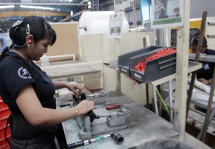 Empleadores yucatecos aseguran que la generación de empleo va al alza en la entidad. (Milenio Novedades)