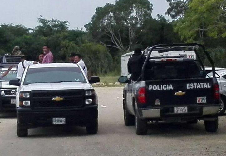 El operativo se llevó a cabo en la zona sur de Quintana Roo. (Redacción/SIPSE)