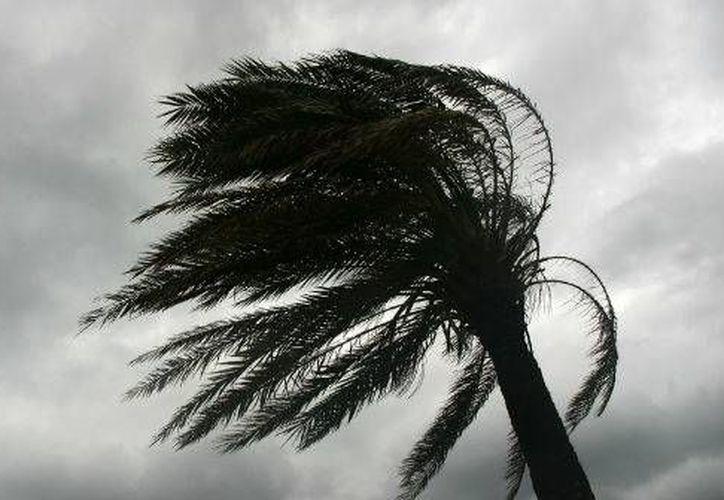 En Yucatán cada vez hay más conciencia sobre los huracanes. (Internet)