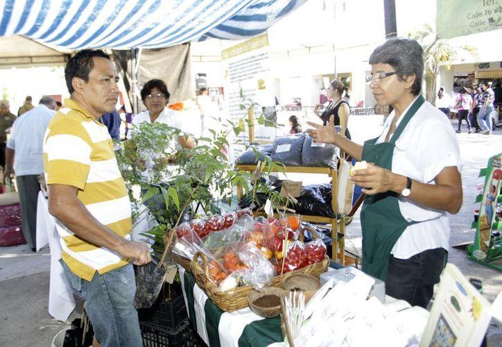 En el Ecotianguis se ofrecen vegetales, entre otros productos. (Christian Ayala/SIPSE)