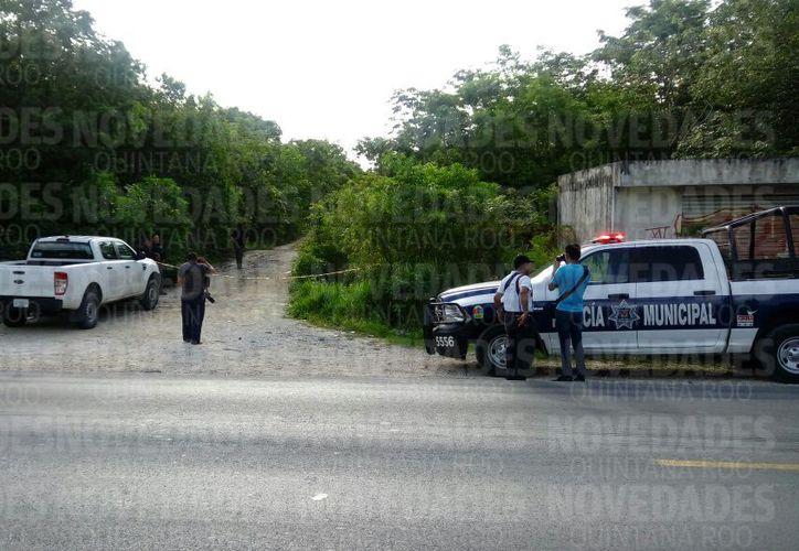 El cuerpo fue encontrado en un área verde de la Colonia Santa Cecilia. (Eric Galindo)