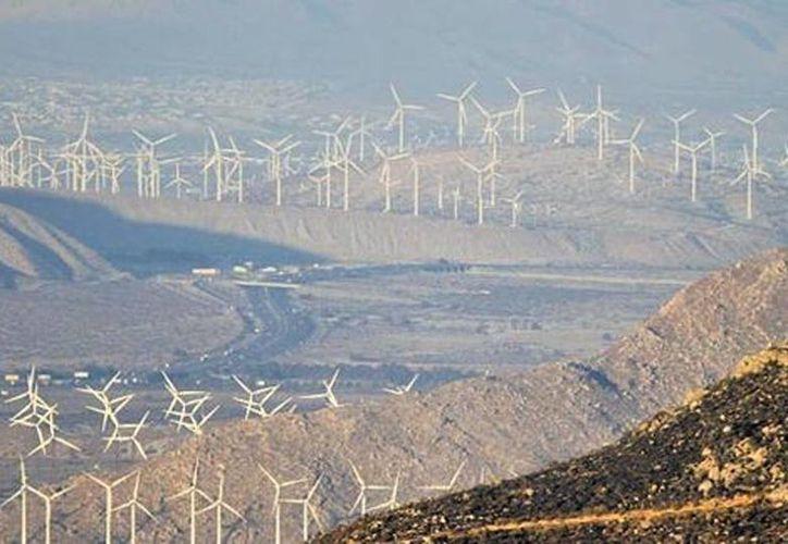 Empresas como Sanyo, Acciona, Iberdrola, EnergiesNouvelles (EDF), Vestas y Gamesa buscan invertir principalmente en el sector eólico. (Reuters)