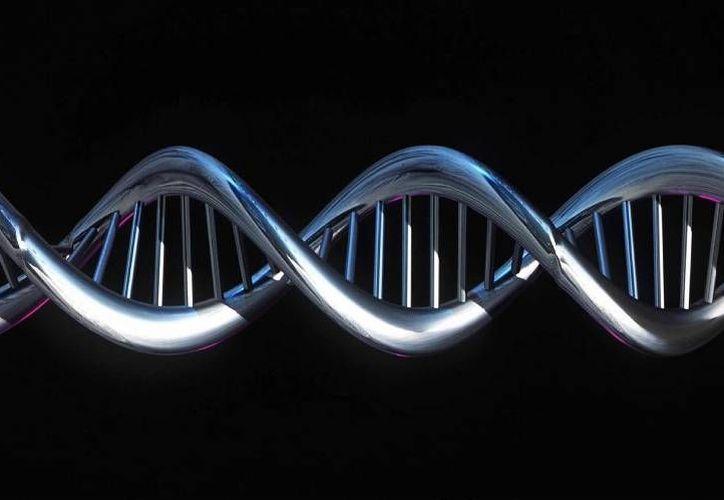 La técnica implicaría por primera vez implantar, en mujeres, embriones modificados genéticamente para evitar enfermedades incurables. (nacion.com/Archivo)