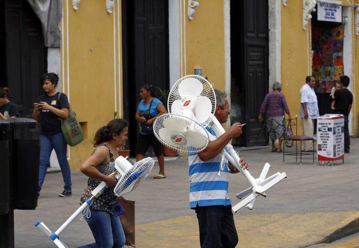 Los ventiladores han sido de los electrodomésticos más buscados por los yucatecos para refrescarse en casa. (Chrisitan Ayala/SIPSE)