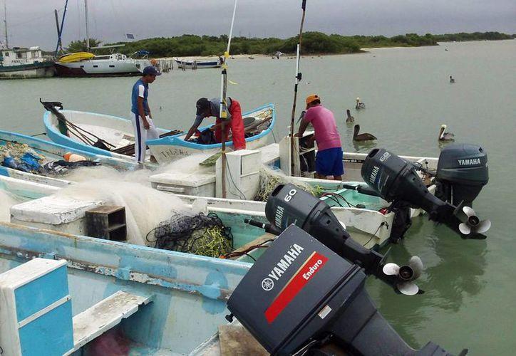 La gasolina y el diésel tendrán un 100 por ciento de estímulo fiscal en enero de 2017, para el sector pesquero y agropecuario. Imagen de contexto de un grupo de pescadores. (Milenio Novedades)