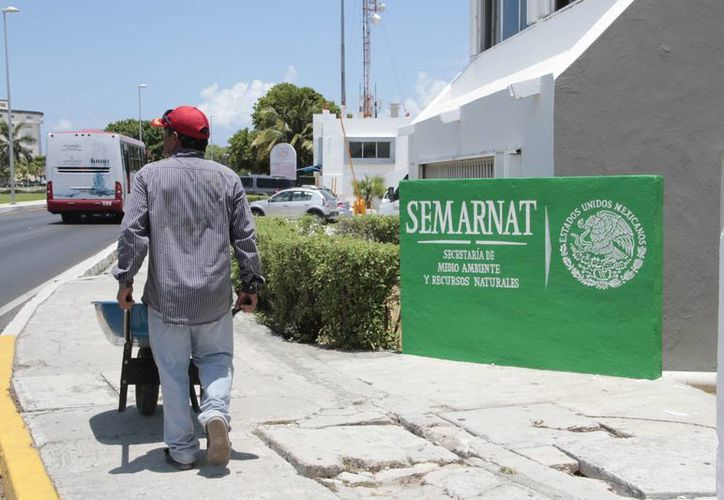 La Semarnat tiene una lista de siete planes que realizará con los 46 millones 899 mil 563 pesos, uno de ellos en Benito Juárez. (Tomás Álvarez/SIPSE)