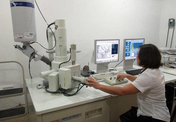 El Microscopio Electrónico de Barrido ofrece gran aporte a investigaciones que aun no han sido bien aprovechadas. (Milenio Novedades)