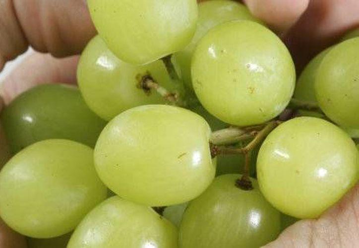 Las uvas enteras son un riesgo para los niños menores de cinco años. (http://www.huffingtonpost.com.mx)