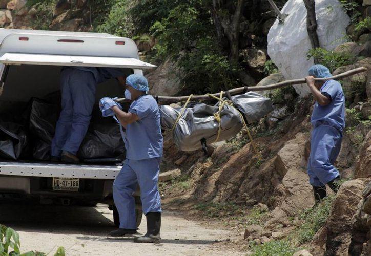 Actualmente en Guerrero hay 449 cadáveres sin identificar en sus Semefos. (hoylosangeles.com)