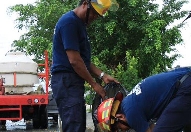 Protección civil se mantiene siempre actualizada para informar a la ciudadanía. (Redacción/SIPSE)