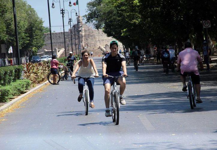 Se estima que cada domingo unas tres mil personas acuden a pasear a la Bicirruta. (SIPSE)