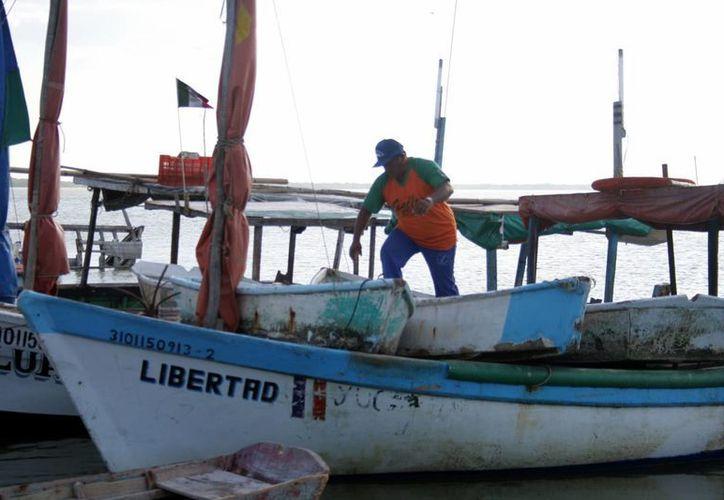 Pescadores yucatecos han tenido que guardar sus herramientas antes de tiempo, a pocos días del inicio de la veda del mero. (SIPSE)