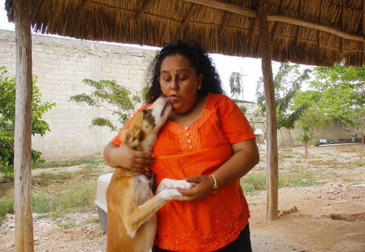 Lidia Saleh Angulo junto con uno de los perros que se encuentran en el albergue para adopción. (Juan Albornoz/SIPSE)
