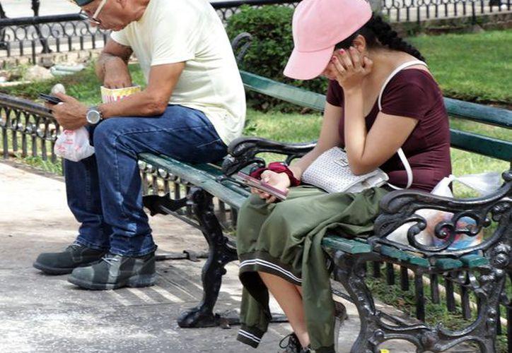 Miles de personas utilizan el internet en los parques públicos. (Foto: Milenio Novedades)