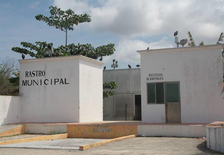 Hasta 200 mil pesos se destinan al mes en operaciones del rastro. (Julián Miranda/SIPSE)