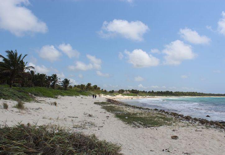 El proyecto afectaría un sitio tan importante donde anidan tortugas marinas. (Sara Cauich/SIPSE)