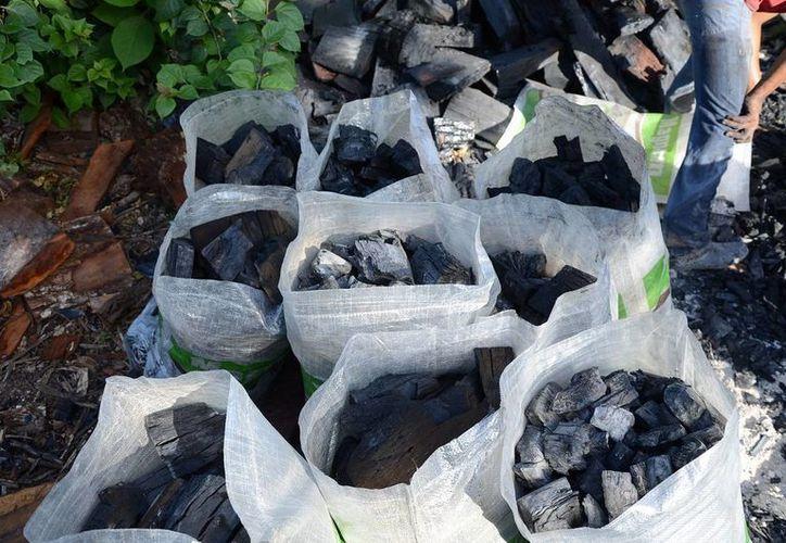 Ejidos del sur de Quintana Roo crearon la marca de carbón vegetal 'Candela Maya', con material derribado por huracanes. (Edgardo Rodríguez/SIPSE)