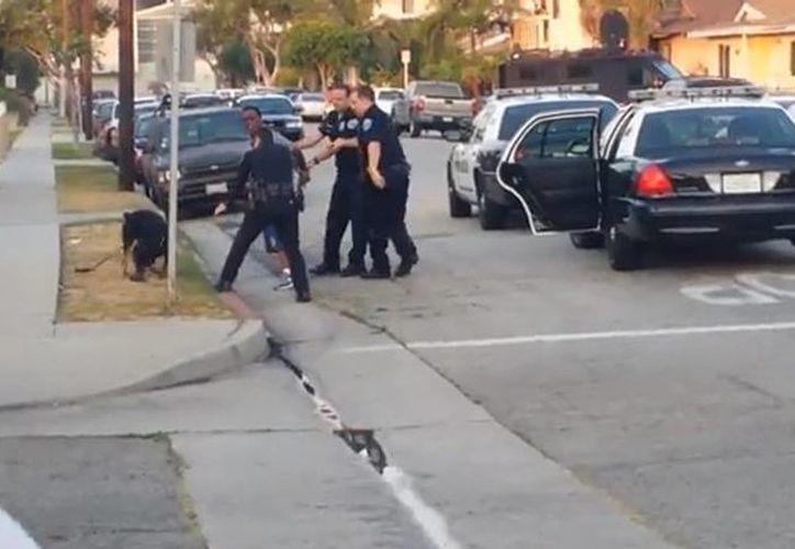 Uno de los oficiales disparó cuatro balazos sobre el animal en presencia de muchos transeúntes. (YouTube)