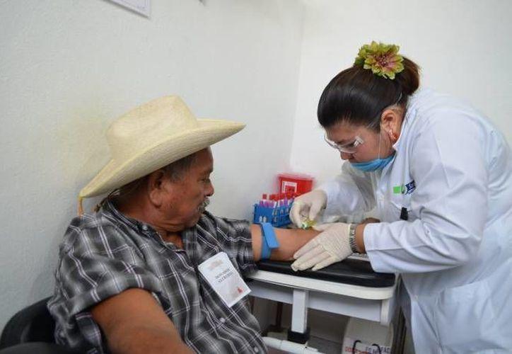 El principal obstáculo es la dilación en los trámites para una autorización sanitaria. (Luis Soto/SIPSE)
