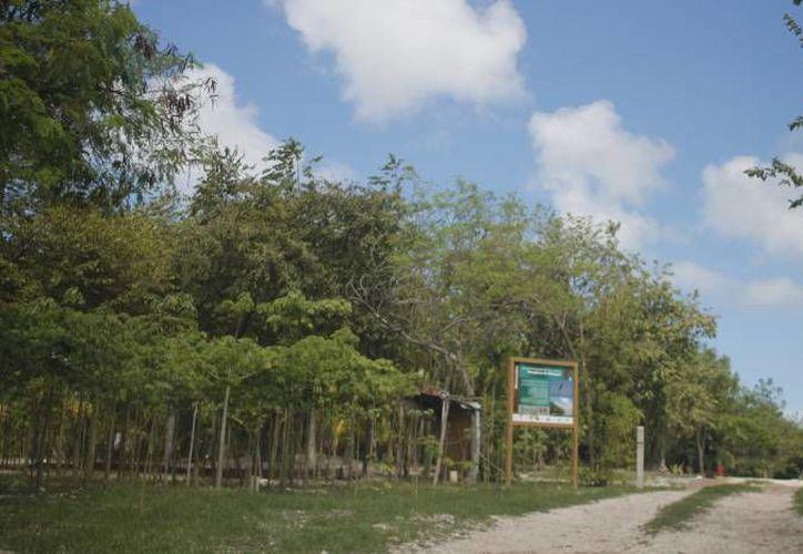 El centro de esparcimiento se desarrollará en un polígono de 107 hectáreas aproximadamente. (Israel Leal/SIPSE)