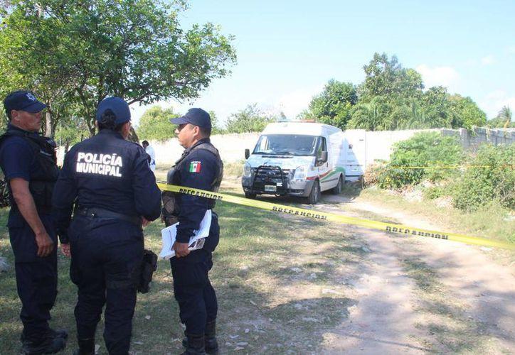Se requieren al menos 500 policías para fortalecer las operaciones de seguridad en todo el estado. (Eddy Bonilla/SIPSE)