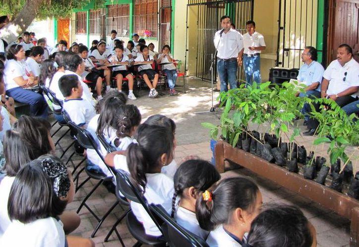 Durante el año se implementaron cursos en escuelas de nivel básico. (Cortesía/SIPSE)