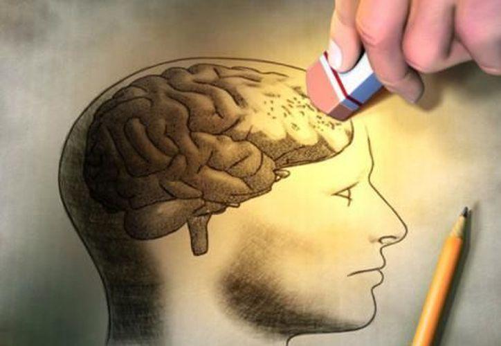 A pesar de que el nuevo proceso se enfoca de manera principal a encontrar soluciones al Alzheimer, también busca que el tejido se pueda usar en la comprobación del funcionamiento de fármacos en otras enfermedades neurológicas. (Internet/Contexto)